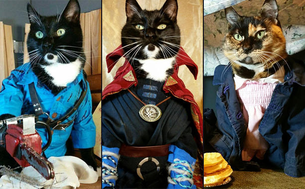 cat-cosplay-image-tout